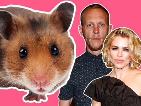 Laurence Fox just compared his split from Billie Piper to the loss of a pet hamster