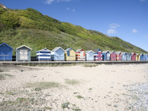 15 reasons Norfolk is the best place to raise a family
