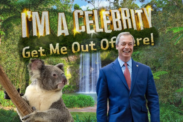 NIgel Farage for im a celebrity get me out of here credit rex/metro nigel-jungle-rex.jpg