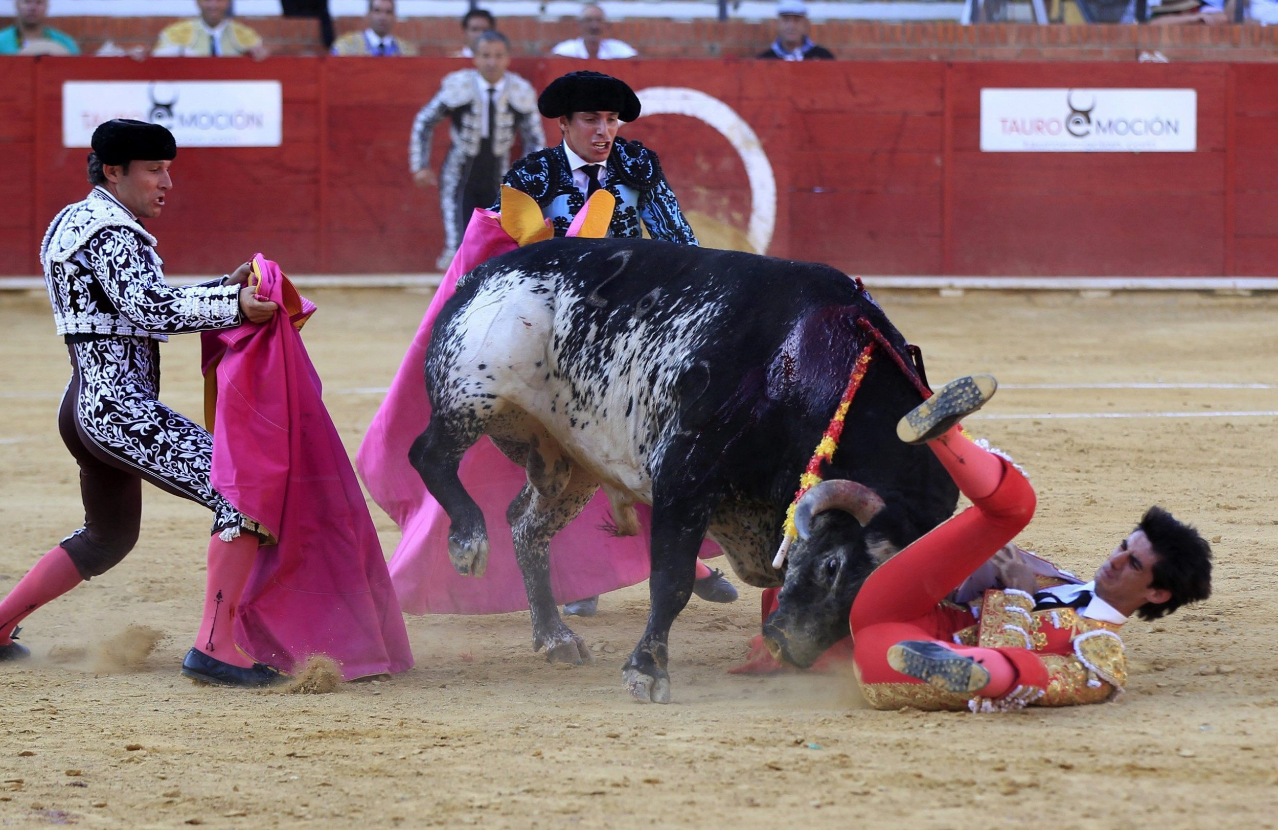 epa05417591 Spanish bullfighter Victor Barrio (R), 29, is gored during a bullfight held on the occasion of Feria del Angel in Teruel, Aragon (Spain), 09 July 2016. Barrio died due to the injures after being seriously gored by his third bull. EPA/ANTONIO GARCIA