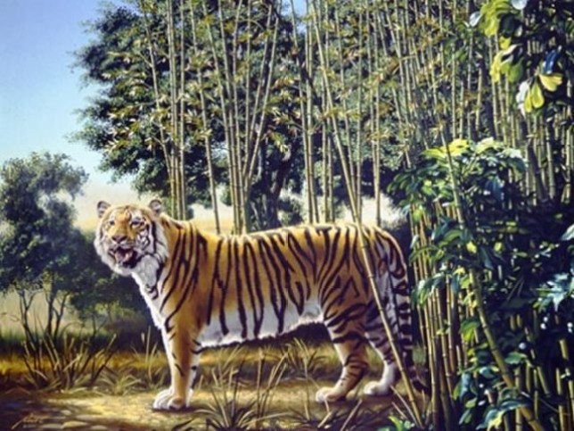 Optical Illusion Can You Find The Hidden Tiger In This Painting