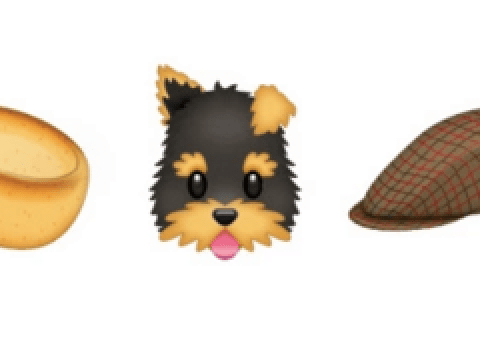 Yorkshire now apparently wants its own emojis