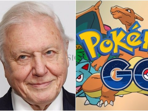 Pokemon GO narrated by David Attenborough is everything