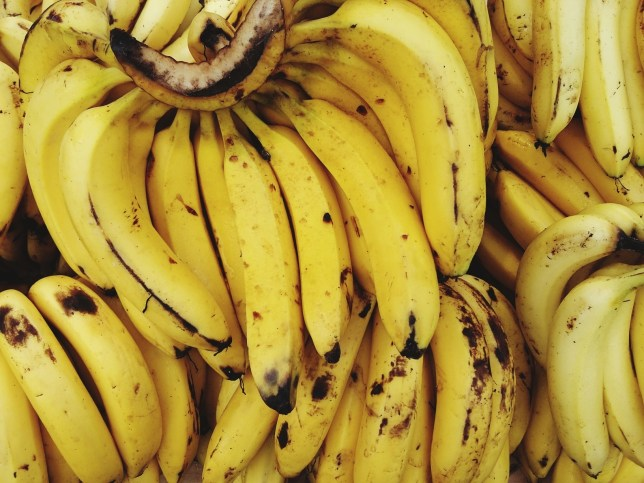 The world is facing a 'banana armageddon' and the fruit could die out