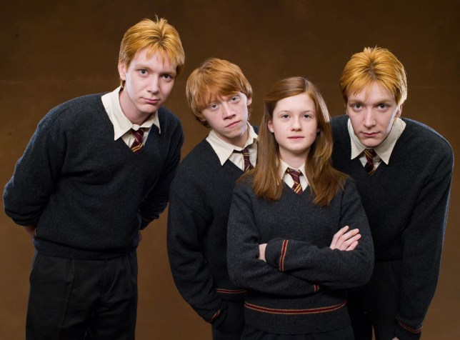Ginger-Haired People Can Get Into This Zoo For Free Picture: harrypotter.wikia.com