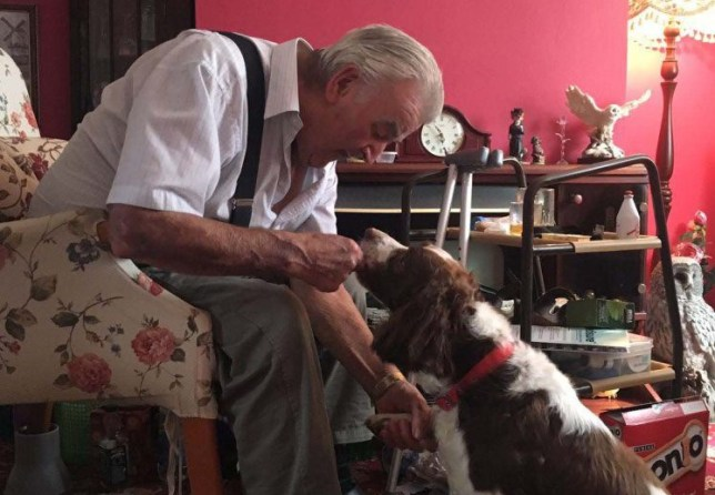 PIC FROM MERCURY PRESS (PICTURED: JOHN PAYNE, 82, WITH HIS DOG FLY) A heartbroken pensioner whose dog died while he was in hospital has melted hearts after his tearful reaction to his surprise rescue pooch was caught on film. John Payne, 82, was devastated when English Springer Spaniel Swift died due to an enlarged heart last month - while his doting owner was himself in hospital with septicaemia. But granddaughter Jodie Payne, 21, set out to put a smile back on the grandad-of-six's face and spent two weeks desperately searching for a replacement pet of the same breed. Heartwarming footage of the beauty therapist introducing her grandad to nine-year-old rescue pooch Fly - at which point he promptly bursts into tears - has since gone viral. SEE MERCURY COPY
