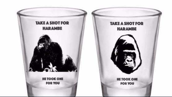Glasses let you 'take a shot for Harambe, because he took a shot for you'