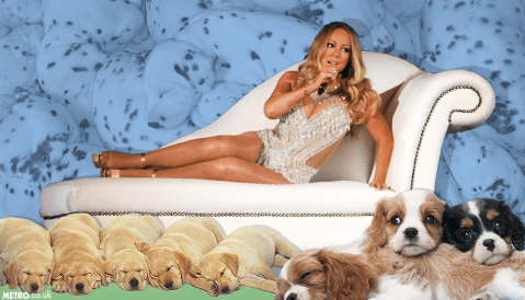 First trailer for Mariah Carey's reality show sees her blame the media for her diva reputation