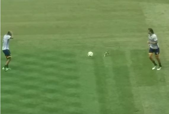 Ashley Cole and LA Galaxy players 'kill' pigeon during warm-up