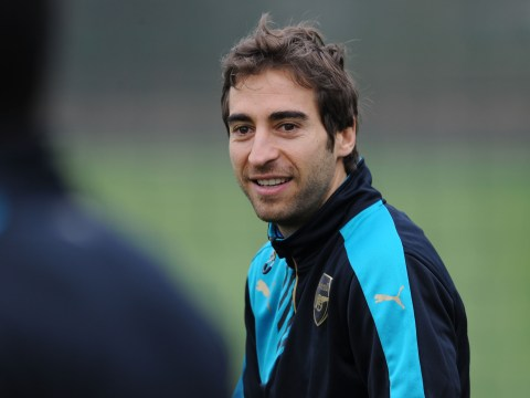 Alan Pardew confirms Crystal Palace in talks with former Arsenal midfielder Mathieu Flamini