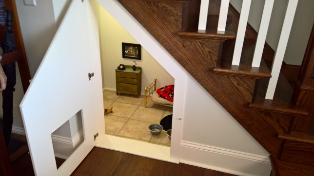 Visited my aunts new house over the holiday. This is the room she built for her Chihuahua. Chihuahua has his own Harry Potter room under the stairs http://imgur.com/a/J96pq