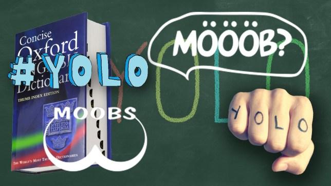 FRR6R2 You Only Live Once yolo written on a blackboard