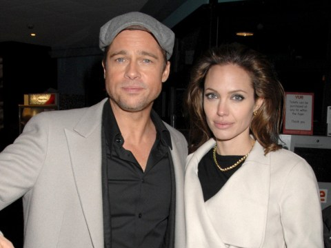 Brad Pitt 'IS being investigated for being verbally abusive and physical with his children' — by the FBI