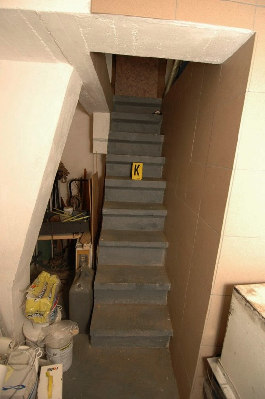 Dog Stairs For Car