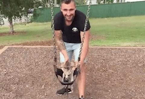 Just a man hanging out with his pet kangaroo