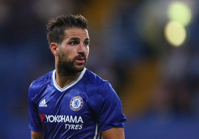 LONDON, ENGLAND - AUGUST 23: Cesc Fabregas of Chelsea during the EFL Cup match between Chelsea and Bristol Rovers at Stamford Bridge on August 23, 2016 in London, England. (Photo by Catherine Ivill - AMA/Getty Images)