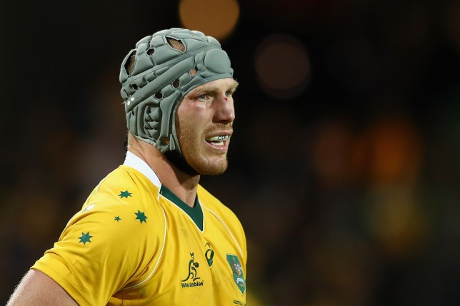 PERTH, AUSTRALIA - SEPTEMBER 17: David Pocock of the Wallabies looks on during the Rugby Championship match between the Australian Wallabies and Argentina at nib Stadium on September 17, 2016 in Perth, Australia. (Photo by Cameron Spencer/Getty Images)