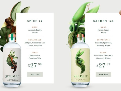 Someone invented an alcohol free gin and it's a game changer