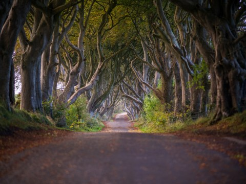 8 reasons why Northern Ireland should be your next weekend break destination