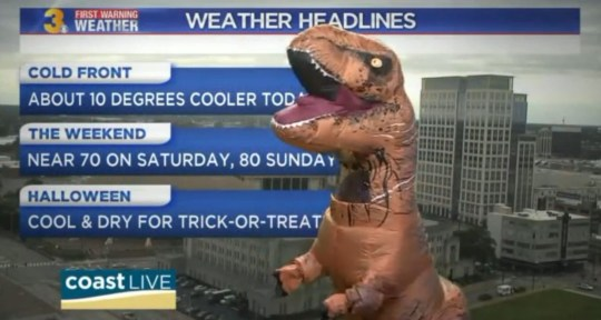 Man dresses as dinosaur to give a weather roarcast   Metro News