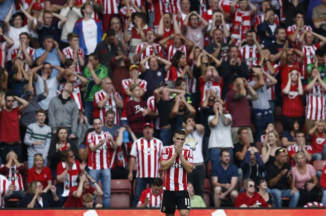 Southampton's Serbian midfielder Dusan Tadic reacts after missing a chance during the English Premier League football match between Southampton and Norwich City at St Mary's Stadium in Southampton, southern England on August 30, 2015. AFP PHOTO / JUSTIN TALLIS RESTRICTED TO EDITORIAL USE. No use with unauthorized audio, video, data, fixture lists, club/league logos or 'live' services. Online in-match use limited to 75 images, no video emulation. No use in betting, games or single club/league/player publications. (Photo credit should read JUSTIN TALLIS/AFP/Getty Images)
