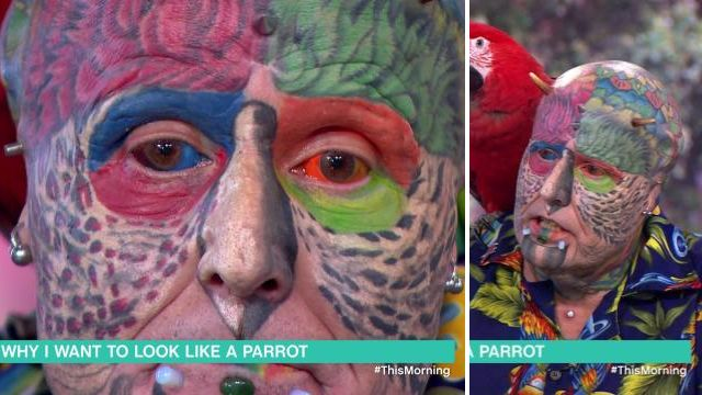 WATCH: 'Human parrot' who injects colours into his eyes divides startled viewers after flying onto This Morning sofa
