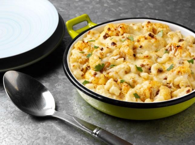 lactofree-mac-n-cheese-2