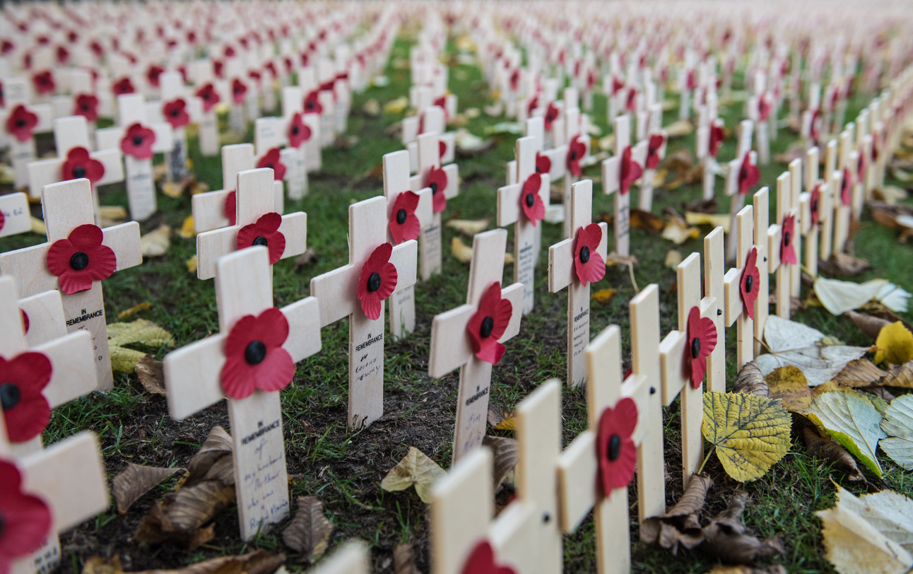 Here's why Scottish Remembrance Day poppies are different