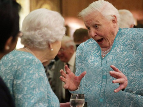 People have memed the hell out of David Attenborough entertaining the Queen