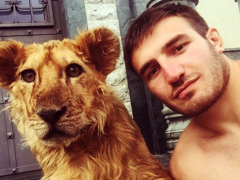 This guy has a pet lioness that he declawed so he could wrestle with it