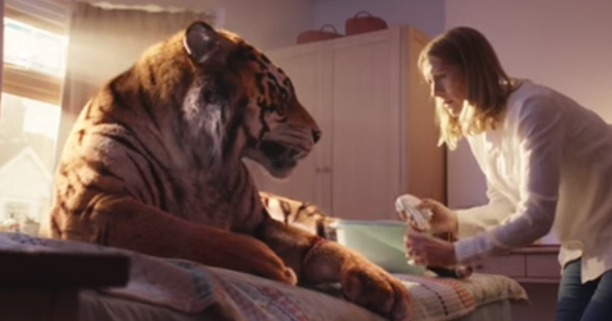 WWF has released the cutest Christmas ad and it'll warm your heart