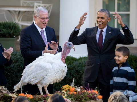 Obama will carry on pardoning turkeys at home even when he's not president