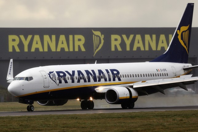 pic - getty LONDON, ENGLAND - OCTOBER 20: A Ryanair plane lands at Stansted Airport on October 20, 2016 in London, England. Ryanair has reduced its profit forecast following the drop in the pound after the Brexit vote. (Photo by Dan Kitwood/Getty Images)