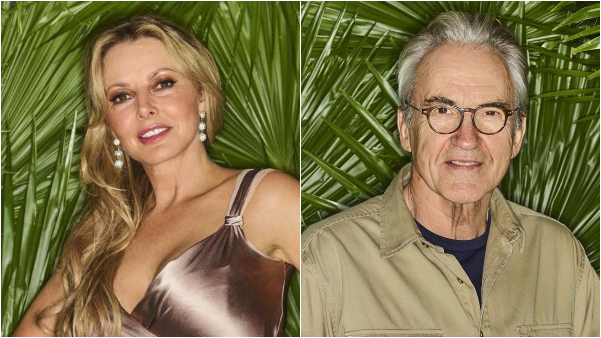 I'm A Celeb fans shocked after Larry Lamb gropes Carol Vorderman in the middle of the night
