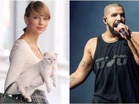 Drake has apparently been showering Taylor Swift's cats with presents now