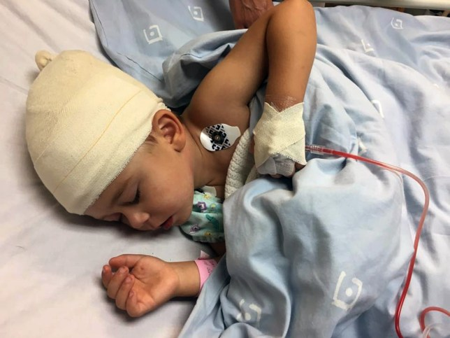 """Pic shows: three-year-old Marco, after surgery.nnDisturbing CCTV footage shows a Rottweiler dog savaging a small boy.nnFilmed in Hennenman in South Africa¿s central Free State, it shows a family garden where a three-year-old boy is standing with a large black dog.nnHe talks and gesticulates and the dog suddenly leaps on him, crashing him to the ground. It bites at him and his legs can be seen kicking furiously as he tries to get away.nnA woman carrying a basket of washing thought to be the family¿s maid Liesbet sees the attack happen but runs away in the opposite direction for an unknown reason.nnThen another woman appears from behind the house and rescues the boy.nnThe house in the film belongs to photographer Francois Slabbert, and the victim of the dog attack is his son Marco, who received injuries to his hand and head.nnLiesbet phoned Mr Slabbert about the attack, who immediately rushed home and shot the dog dead.nnHe was criticised for sharing the video online and for shooting the dog himself rather than giving it to an animal welfare organisation to deal with.nnHe said: """"It wasn¿t out of anger or revenge, but to protect the other people on my property. Nobody knows if the Rottweiler would have attacked someone again. When a dog has attacked someone the chances are good that he will do it again.""""nnHe said he contacted the local branch of animal help group SPCA and was told that they would also have put the animal down.nnMarco was treated in the MediClinic in nearby Welkom and discharged the next day.nnMr Slabbert said of his son: """"He¿s running around again and getting up to mischief.""""nn(ends) Credit; CEN"""