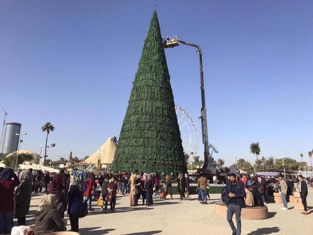 The 85ft tree looks pretty impressive (Picture: AP)