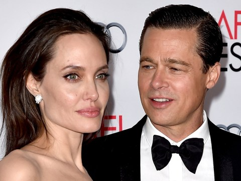 A Brad Pitt and Angelina Jolie documentary exposing their divorce is allegedly in the works