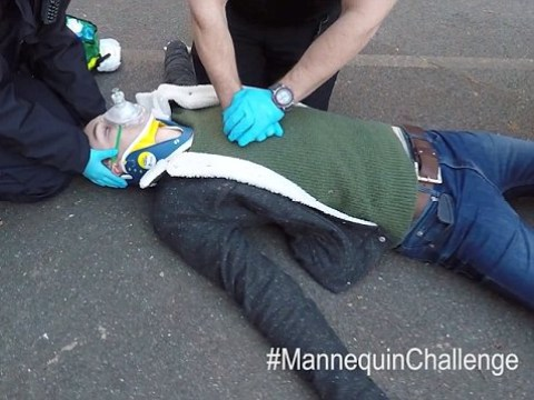 Hard-hitting mannequin challenge shows dangers of drink driving