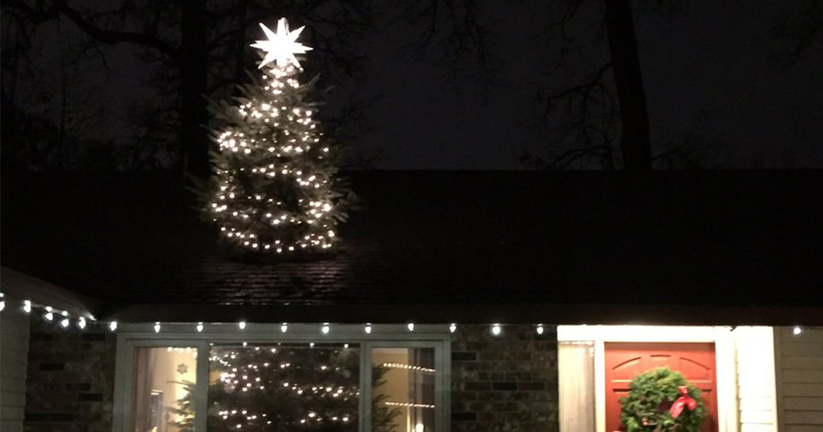 20 Ft Christmas Tree.Family Buy 20ft Christmas Tree And They Ve Officially Just