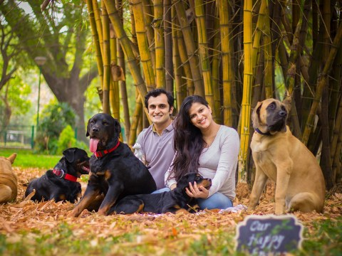 Pregnant woman responds to being told to give up her dogs with a glorious photoshoot