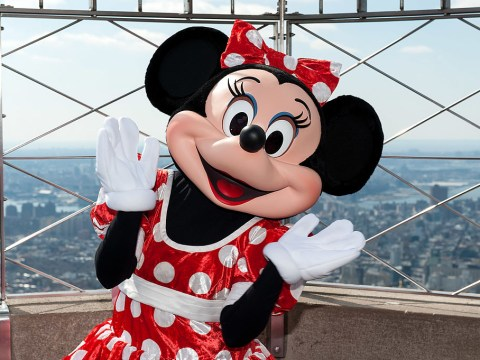 Minnie Mouse 'arrested for stealing £7,000 from tourists'