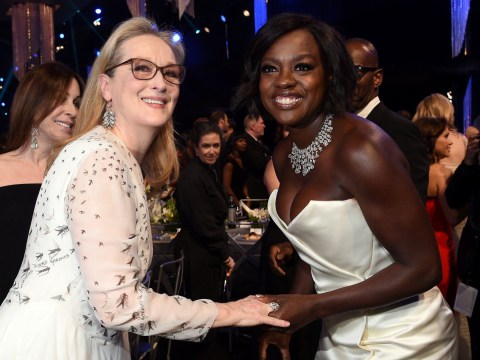 Viola Davis has some strong words for anyone who disses Meryl Streep