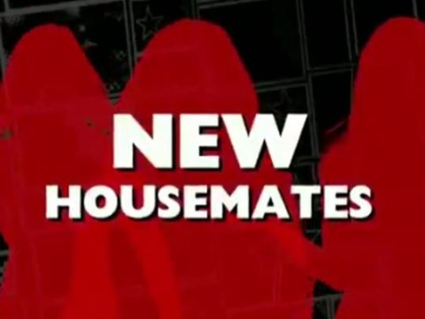 Celebrity Big Brother are getting new housemates to replace Ray J and Brandon Block