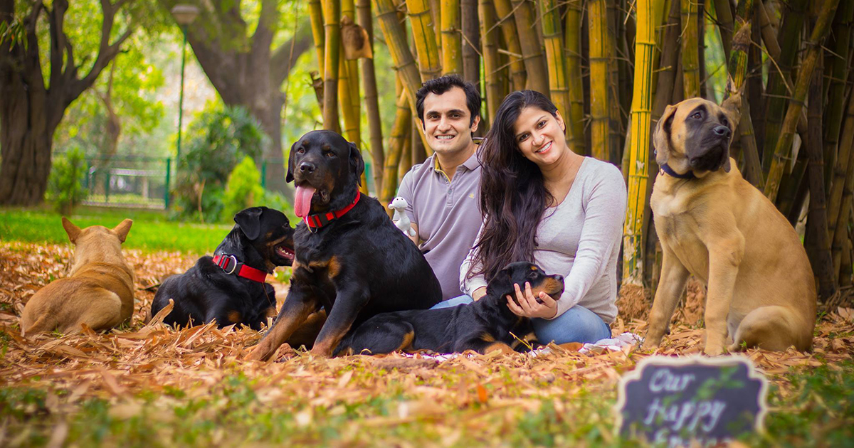 (Picture: Facebook/ Shravan Krishnan) Pregnant couple did brilliant photoshoot when people told them to get rid of their dogs