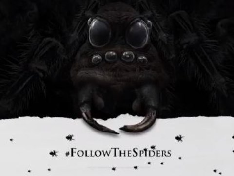 Harry Potter fans are freaking out over cryptic #FollowTheSpiders teasers