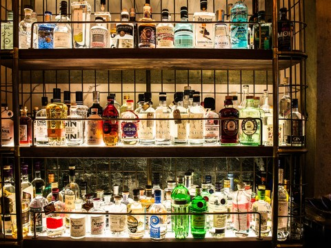 London biggest gin bar is every gin lover's dream – with 400 gins and 27 tonics