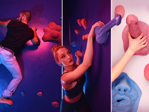 You'll soon be able to climb a wall of genitals