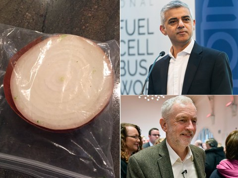 This half onion in a bag has more Twitter followers than all these British politicians