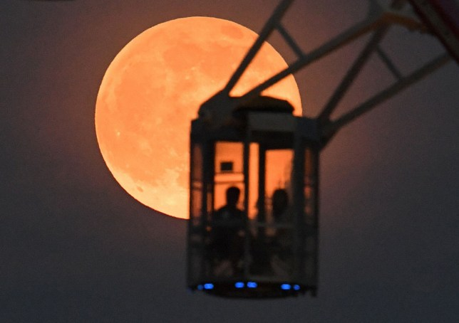 People riding the Ferris wheel gaze at the Strawberry Moon in Tokyo, Japan. (Photo by The Asahi Shimbun via Getty Images)